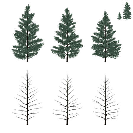 yong: Set of yong firs trees in flat colors