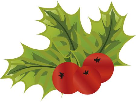characteristic: Mistletoe plant characteristic of Christmas and romance