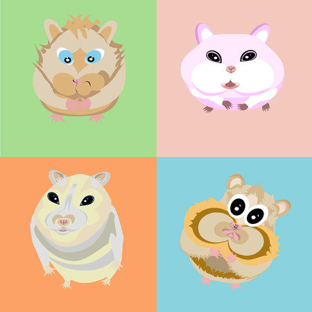 Comics Hamster
