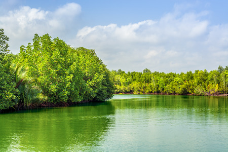 Beautiful landscape on the green lake with blue skies in the nature.