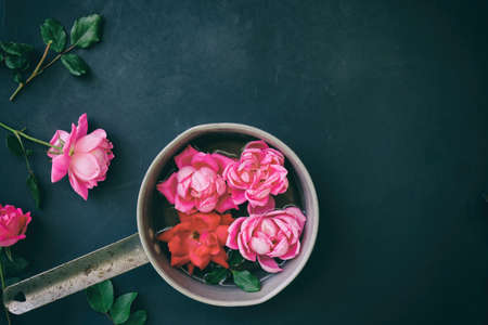 Pink roses float in pot with greenery on black background.  Copy space for romantic concept.