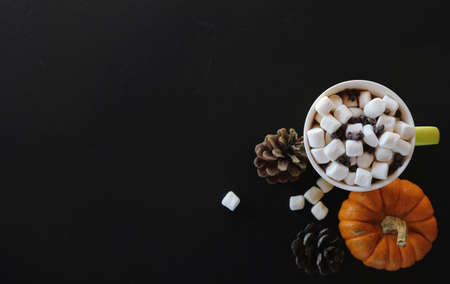 Hot cocoa and marshmallows on black background with copy space for fall banner.