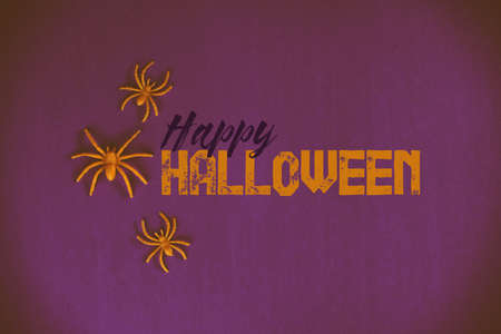 Happy Halloween banner with text and spiders.