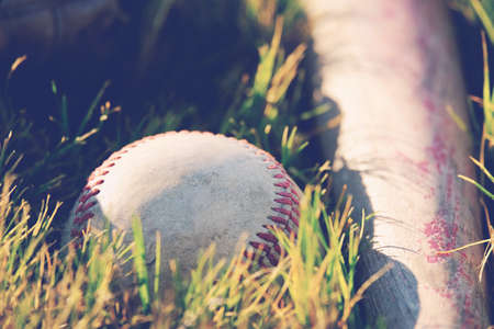 Baseball season shows ball in grass on field with bat and glove close up. Stock Photo