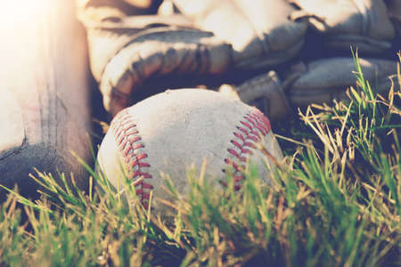 Baseball equipment closeup shows players mitt with ball laying in grass during summer.