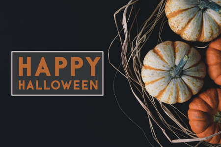Rustic October banner with mini pumpkins and Happy Halloween text.