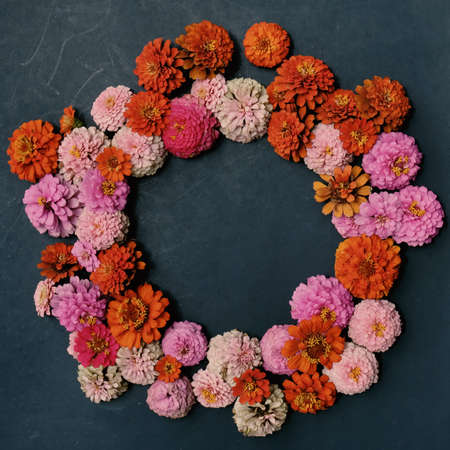 Floral wreath with copy space for mothers day or holiday, pink and orange Zinnia blooms on black background.