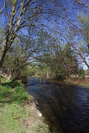 creek flowing between banks in Lowville park