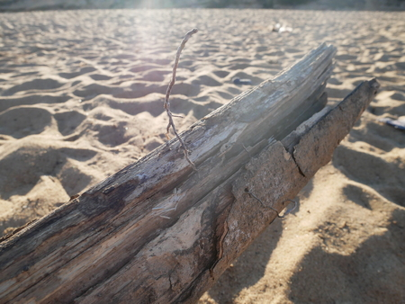 Old timber on the beach.