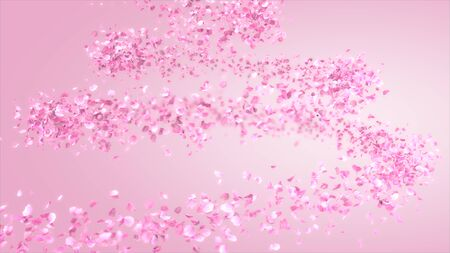 The pink carnation flower moves in a spiral pattern. 3d rendering