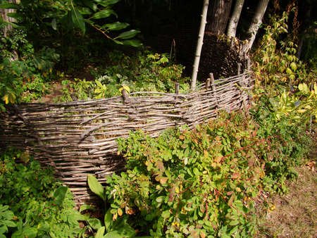 fence: willow fence