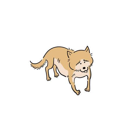 Old dog shiba inu 矢量图像