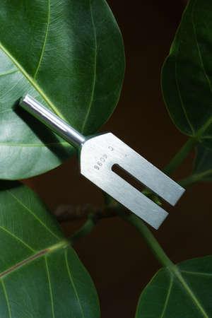 Tuning vork en kristal op blad. Stockfoto
