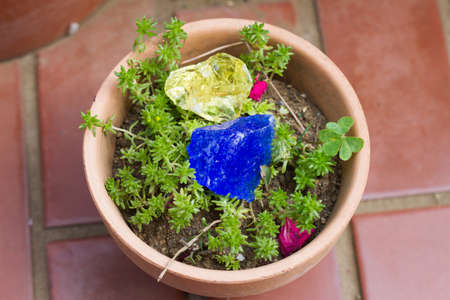 green gemstone: Healing crystal on a green plants Stock Photo