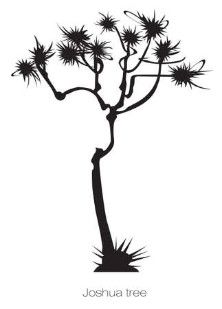 joshua: a black graphic joshua tree on white background Illustration