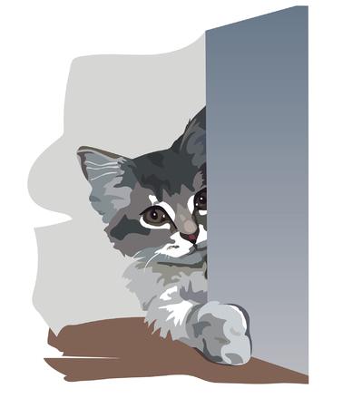 ardour: A kitten was harboured in an ambush