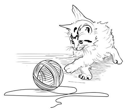 hank: Kitten play with the hank of threads