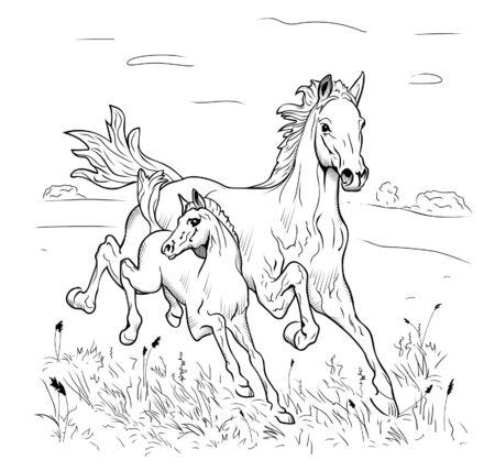 Mare et poulain se dépêchent sur la steppe sur un fond blanc Vecteurs