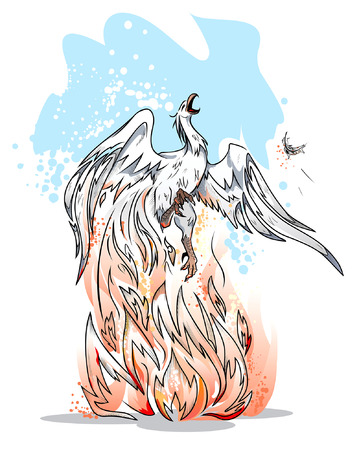 mythical phoenix bird: Legendary bird Phoenix is a symbol of revival Illustration