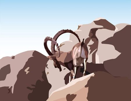 symbol vigilance: A wild ram stands on a narrow mountain path