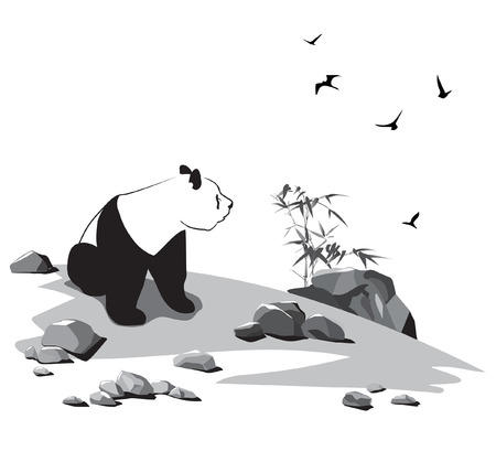 Panda sits among stones and looks at birds