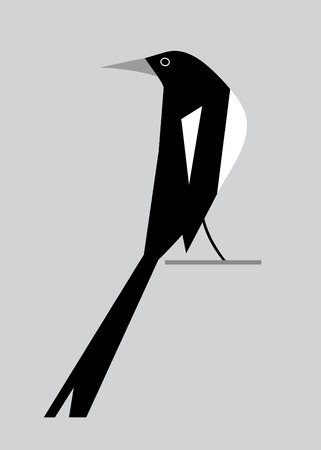 magpie: Minimalism image of magpie on a gray background Illustration