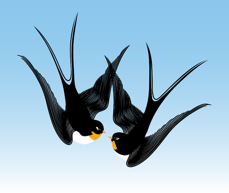 swallows on sky background