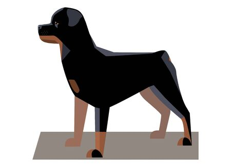 large dog: Rottweiler minimalist image - a large powerful dog of a tall black-and-tan breed Illustration