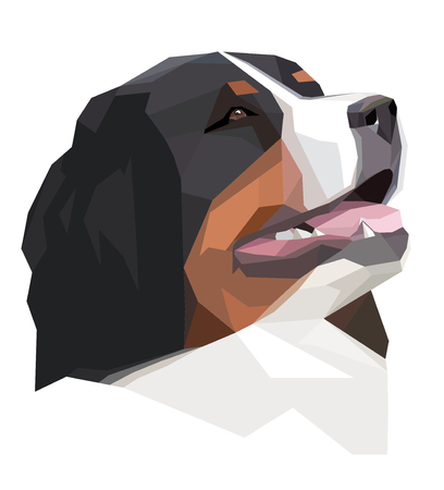 bernese: Head Bernese Mountain Dog in the geometric style on the white background