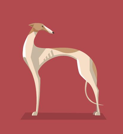 borzoi: Greyhound dog minimalist image on a red background Illustration