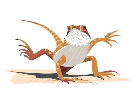 Kung Fu du dragon barbu (Pogona vitticeps) Vecteurs