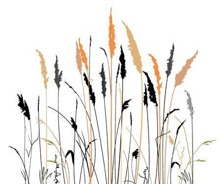 흰색 배경에 대초원 잔디의 실루엣입니다. 미니멀리스트 스타일