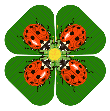Ladybugs collect pollen from plants