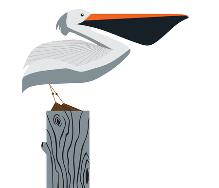 Pelican stands on a column on white background