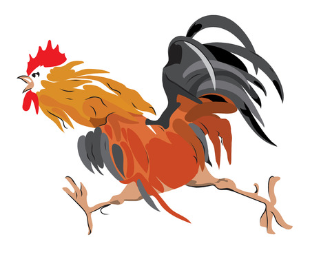 Red rooster is symbol of 2017 year.