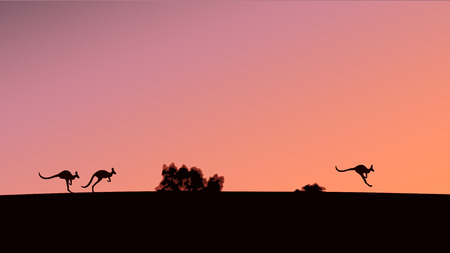 Silhouettes of kangaroos against the background of the evening sky, vector illustration Ilustração
