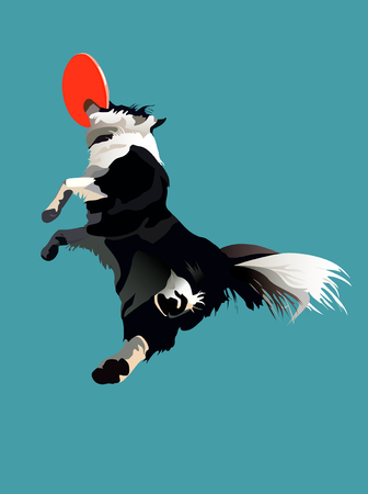 High jump dog for a disc on the blue sky background