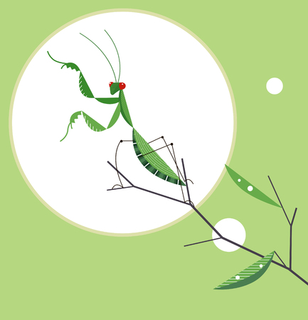 Mantis on a tree branch in a fighting position against the background of the sun, minimalist image