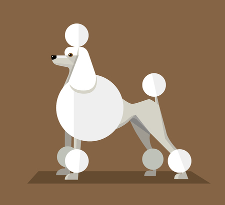 Great White Royal Poodle, minimalist image on a brown background Stock Illustratie