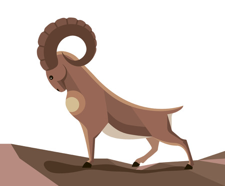 A wild mountain goat stands on a narrow mountain path