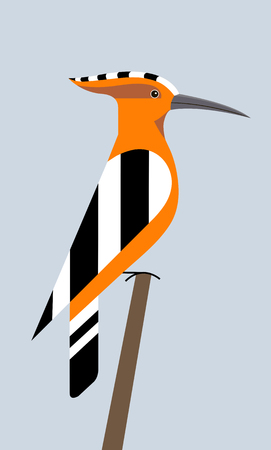 Hoopoe sits on the end of a branch on a light background, minimalist image