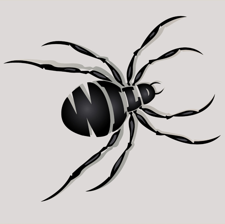 Abstract image of spider on a gray background, font composition