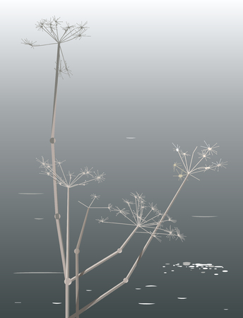 Plant on the shore of the lake, minimalistic image