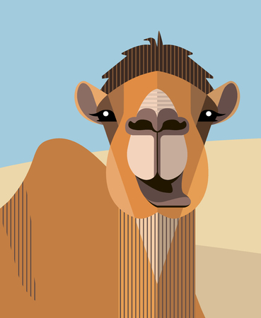 Head of a camel on the background of sand dunes