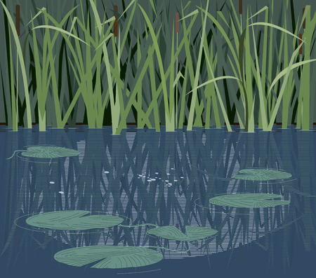 Quiet river corner with reeds and water lilies Ilustração