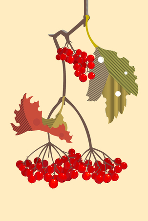 A branch of red viburnum in the fall, minimalist style