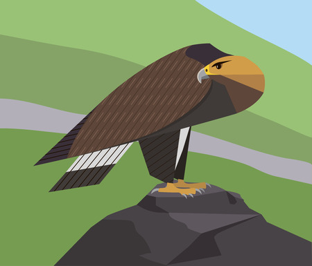 Golden Eagle is sitting on a rock and is vigilantly looking around on a green mountains background, minimalist image