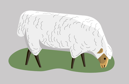 Sheep grazing in the grass, minimalist style Illustration