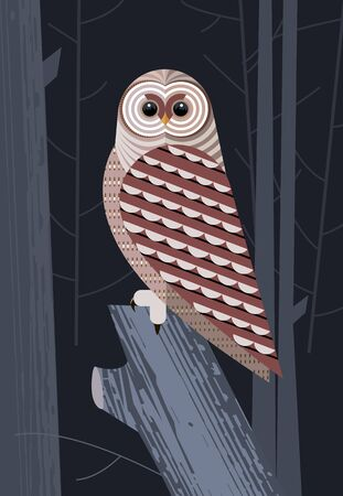 Motley owl before the hunt on night forest background Illustration