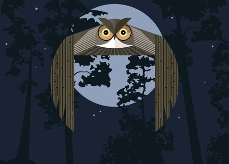 Flying owl against the moonlit sky and pine silhouettes